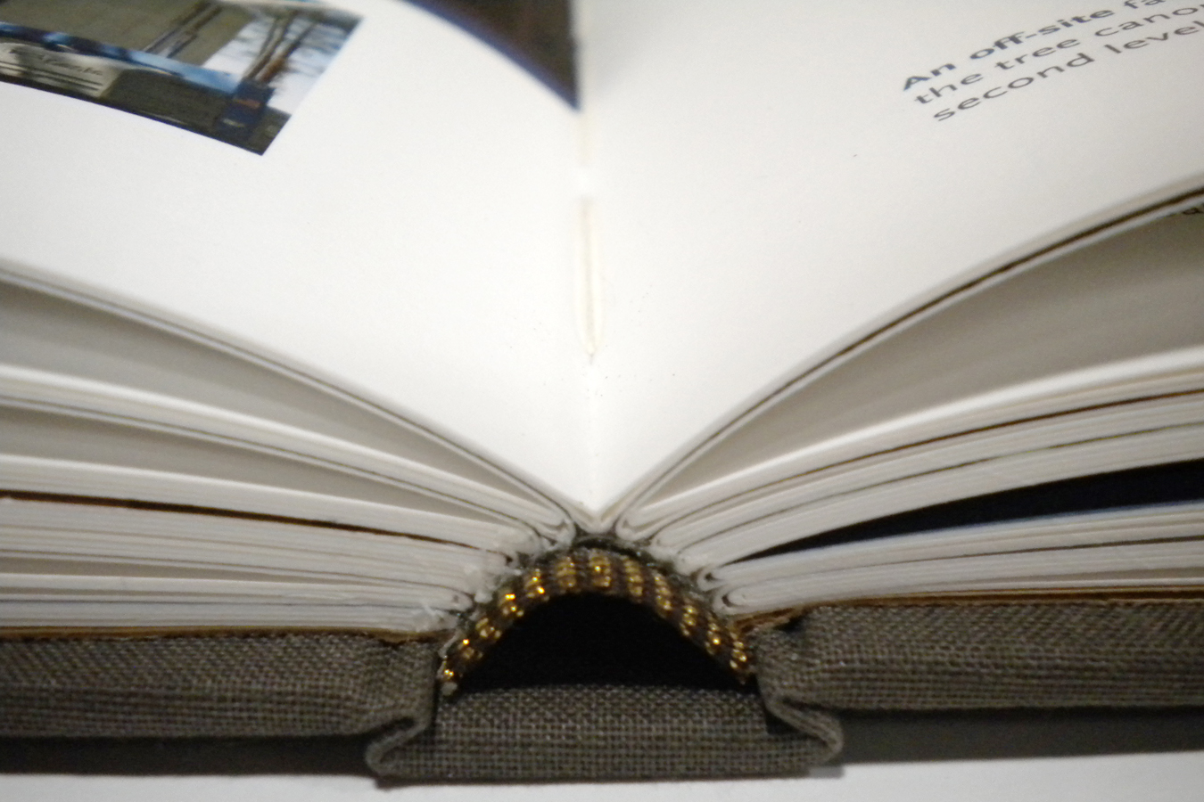 signature sewn books